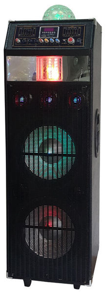 "Picture of 2X12"" Pro PA Speaker with Fog"